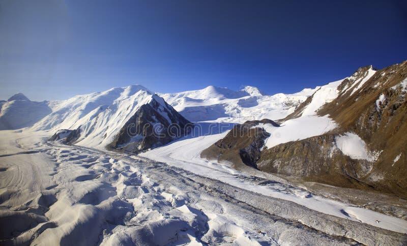Ледники в горах стоковые фото