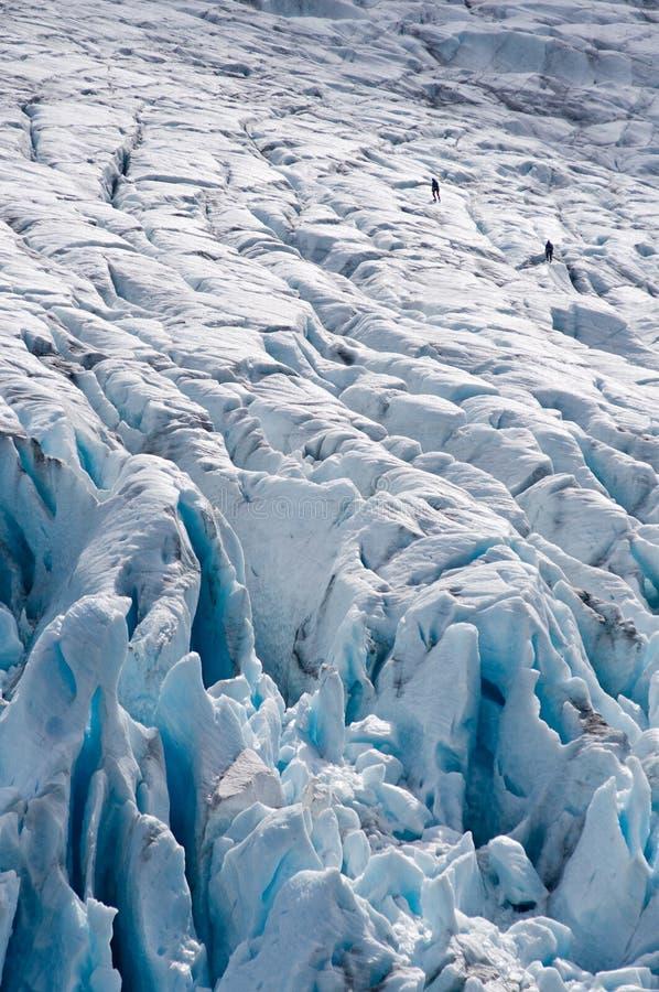 ледник альпинистов стоковые фотографии rf