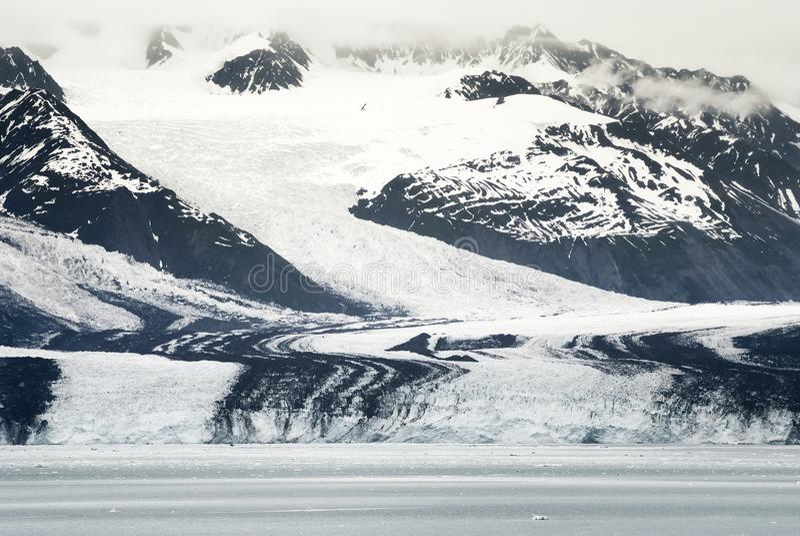 Ледник Гарварда на фьорде коллежа, Prince William Sound, Аляске стоковое фото rf