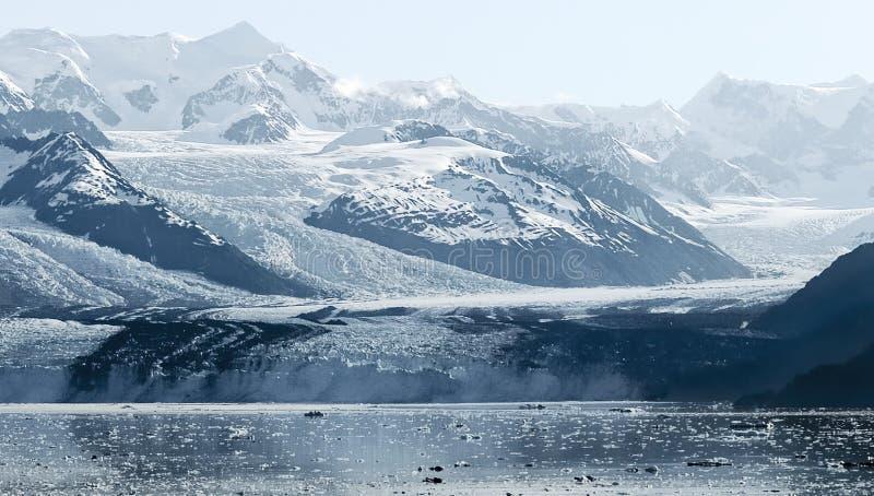Ледник фьорда коллежа, Prince William Sound, Аляска стоковая фотография