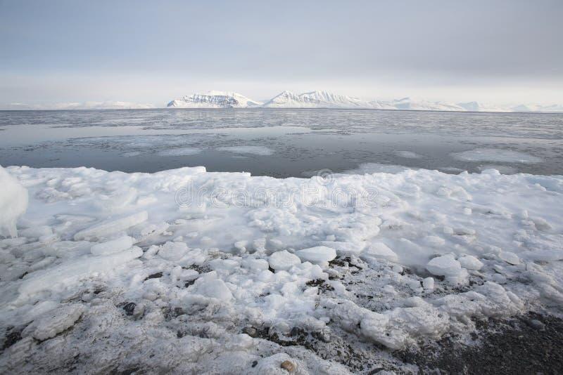 ледовитая зима ландшафта стоковые фотографии rf