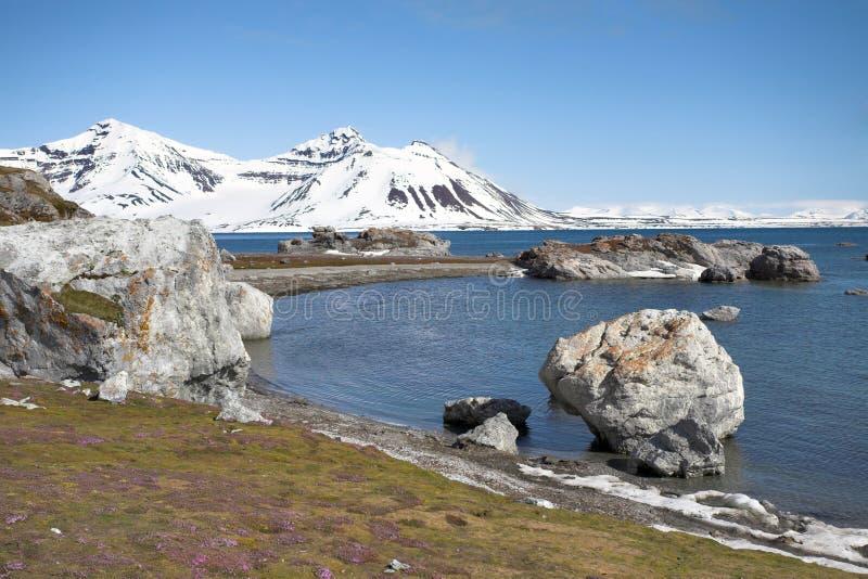 ледовитое лето ландшафта стоковое фото rf