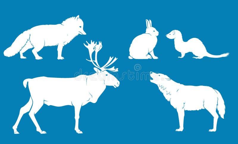 Ледовитые животные земли иллюстрация вектора