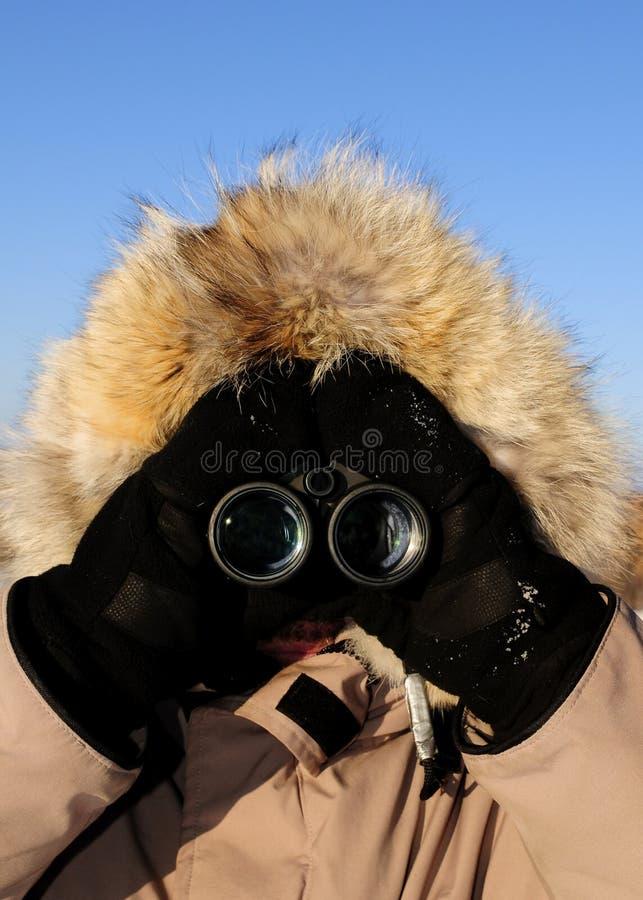 ледовитый исследователь биноклей стоковое фото rf