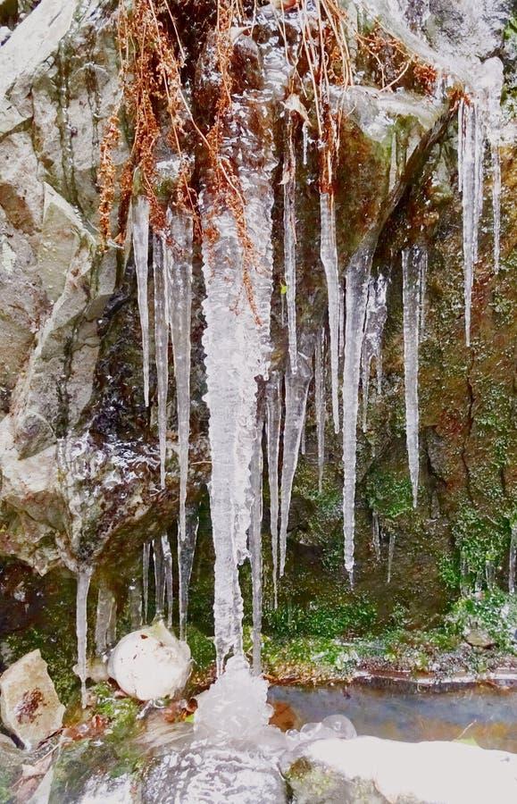 Ледяной и очень твердый водопад - и яйцо стоковое фото