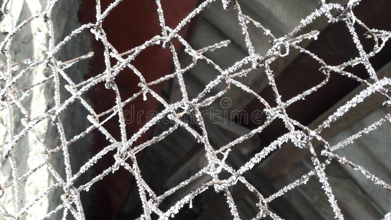 Ледяные, замороженные сети паука на проволочной изгороди Темная предпосылка стоковые изображения