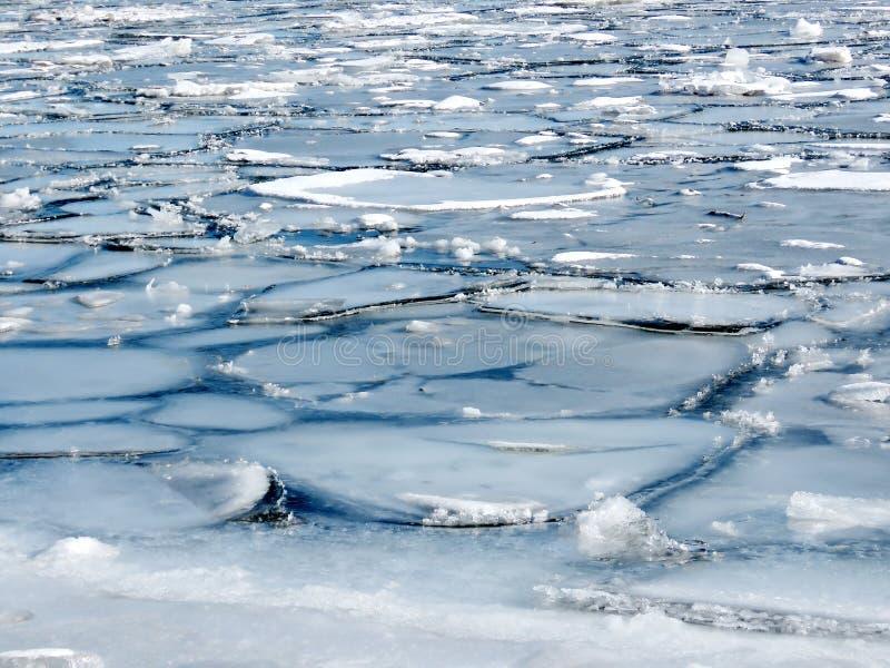 Ледяные поля 2018 озера Торонто стоковая фотография rf