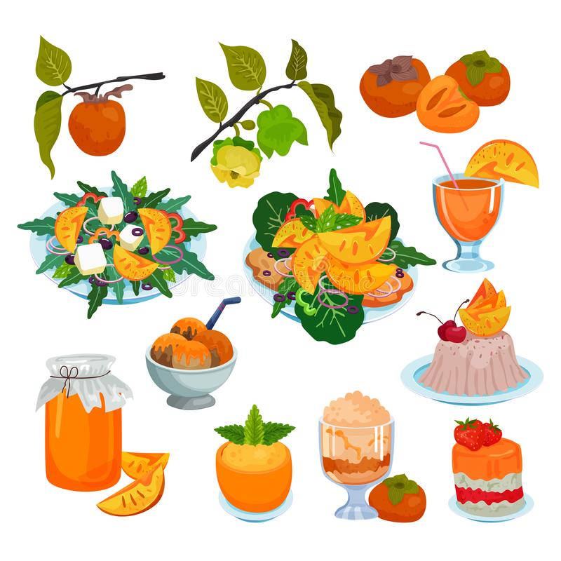 Лед десерта салата еды вектора хурмы свежий fruity напихивает варенья и сладостного плодоовощ комплекта иллюстрации хурм-дерева  иллюстрация штока