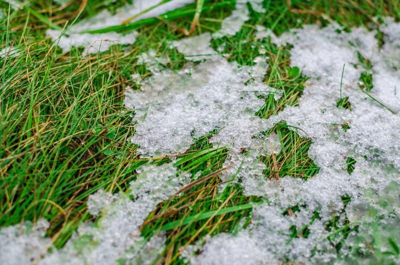 Лед и снег плавя на зеленой траве стоковая фотография