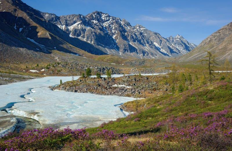 Лед на реке Arhat стоковые изображения