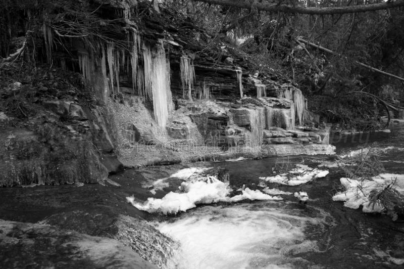 Лед на скальпе стоковые изображения rf