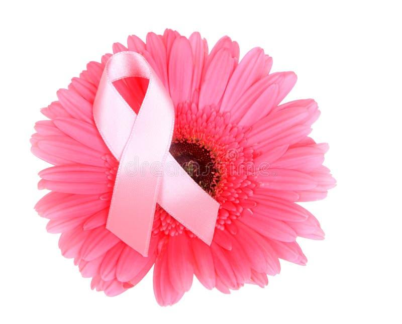 Лента осведомленности рака молочной железы на цветке стоковое изображение rf