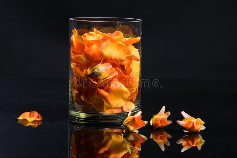лепестки стекла цветка стоковая фотография
