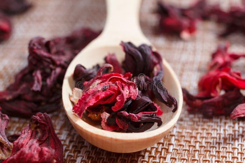 Лепестки чая на деревянном конце-вверх ложки Фото макроса красного любимчика стоковые изображения