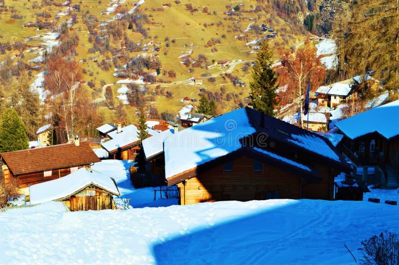Леса и дома в швейцарцах Альпах стоковая фотография rf