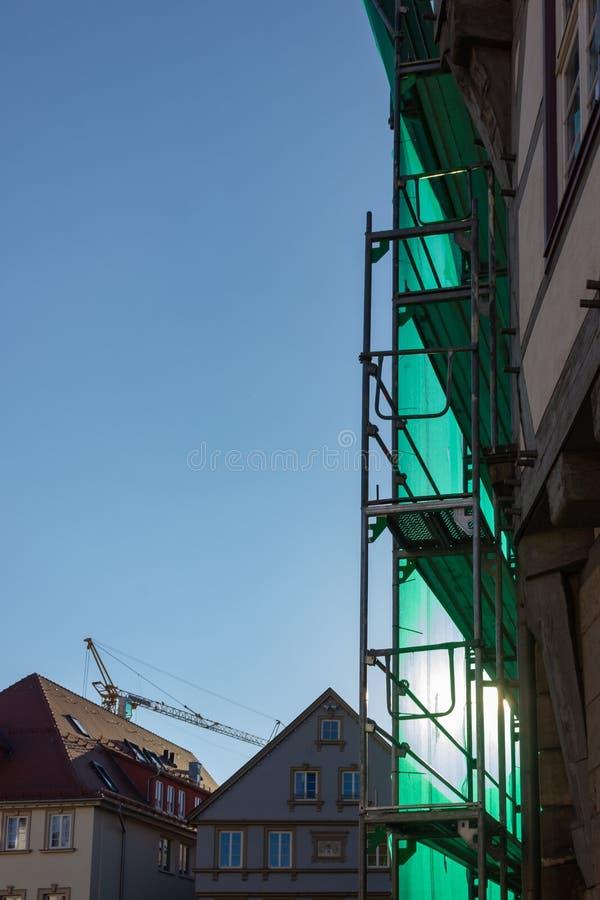 леса с зеленой крышкой на после полудня голубого неба стоковые фото