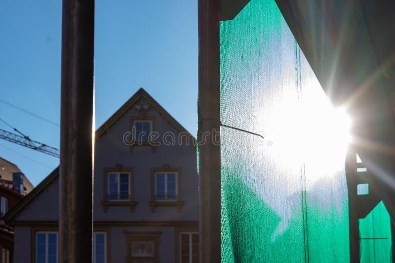 леса с зеленой крышкой на после полудня голубого неба стоковые изображения