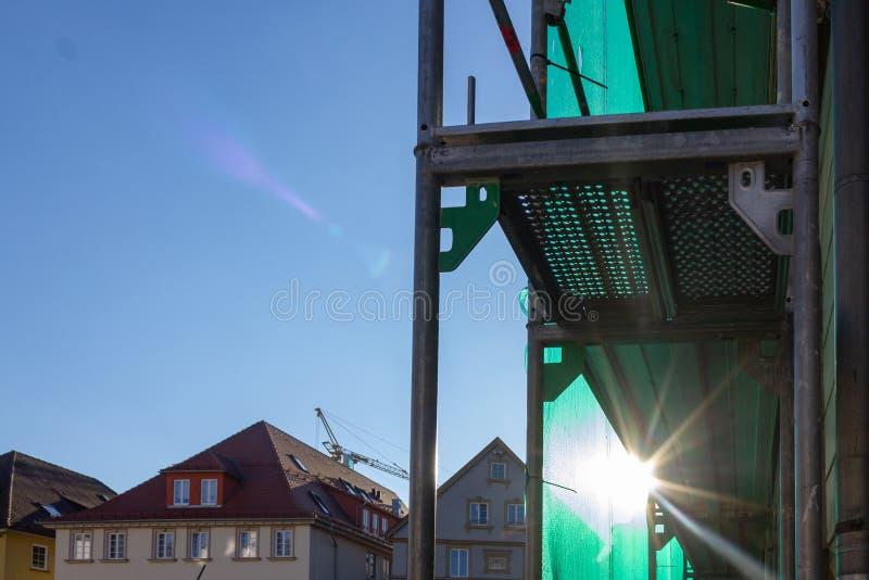 леса с зеленой крышкой на после полудня голубого неба стоковые фотографии rf