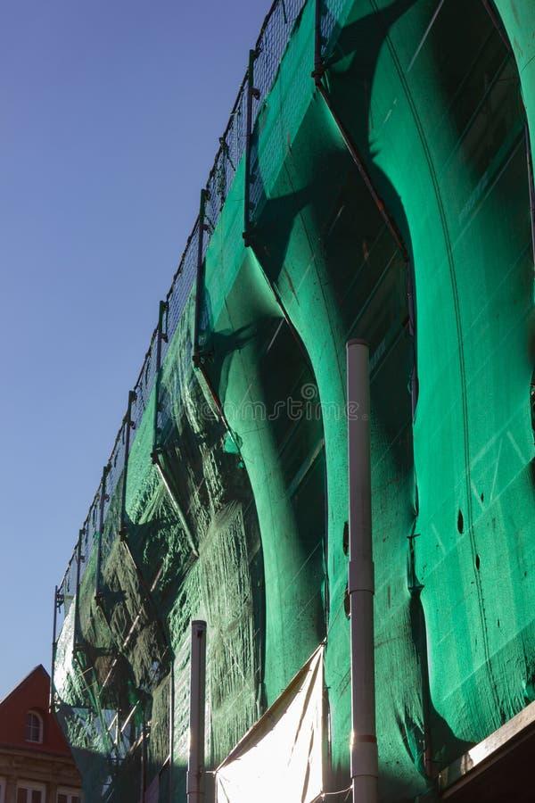 леса с зеленой крышкой на после полудня голубого неба стоковая фотография