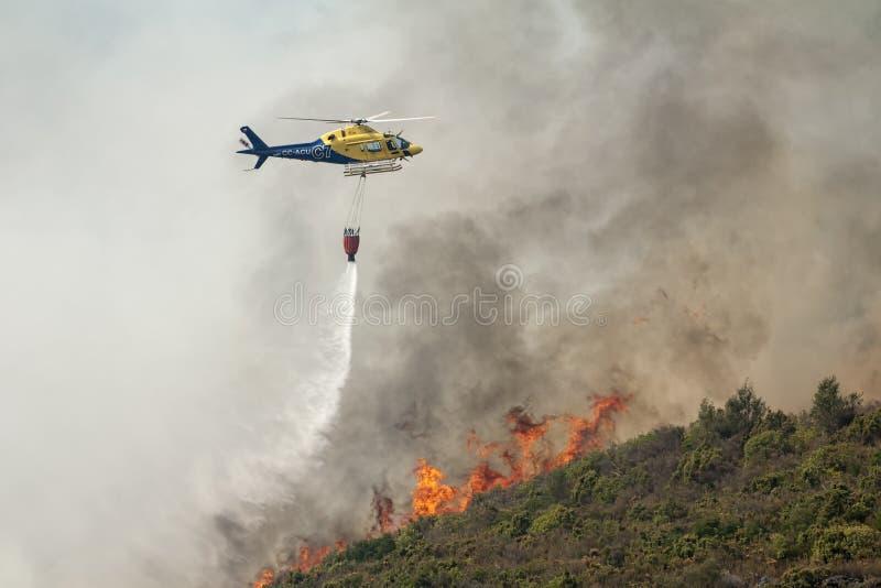 Лесной пожар работает стоковые фотографии rf