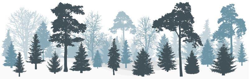 Лесные деревья зимы снежные: спрусы, сосны, силуэт дуба иллюстрация вектора