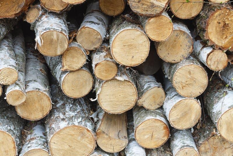 Лесопилка, тимберс, журналы тимберса, охрана лесов, обезлесение, стоковые фото