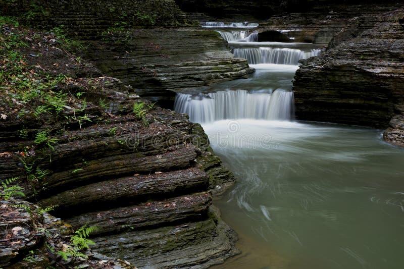 Лестница воды стоковое изображение rf