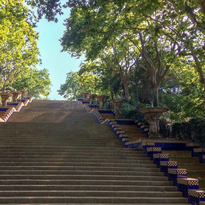 Лестница водя вверх стоковое изображение