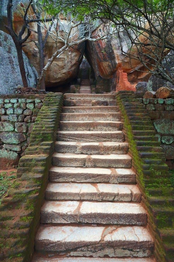 Лестница в замке льва Sigiriya стоковая фотография rf