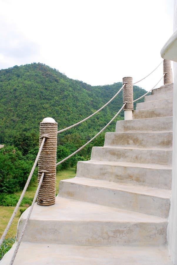 Лестница в природе стоковая фотография rf