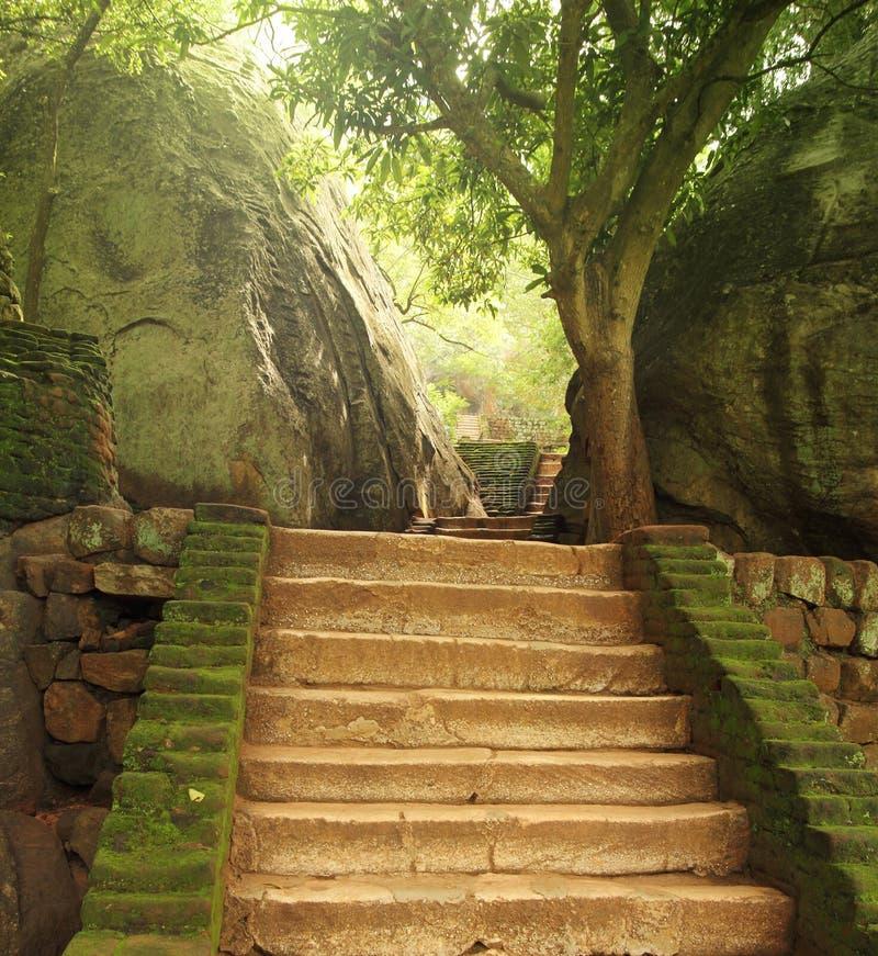 Лестница в sigiriya стоковое фото rf