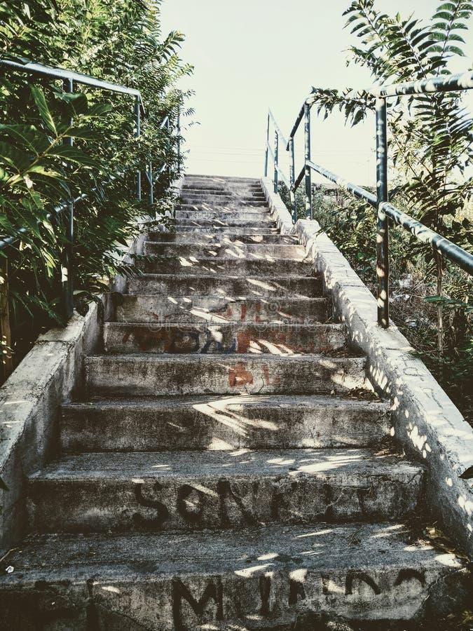 Лестница, Идальго del Parral, чихуахуа стоковое фото rf