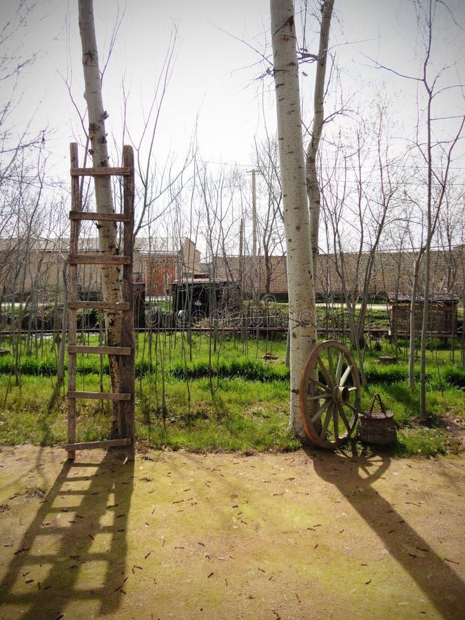 Лестница и колесо стоковая фотография rf