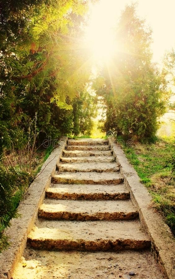 лестница к солнцу - красота в концепции природы, вероисповедания и веры стоковое изображение rf