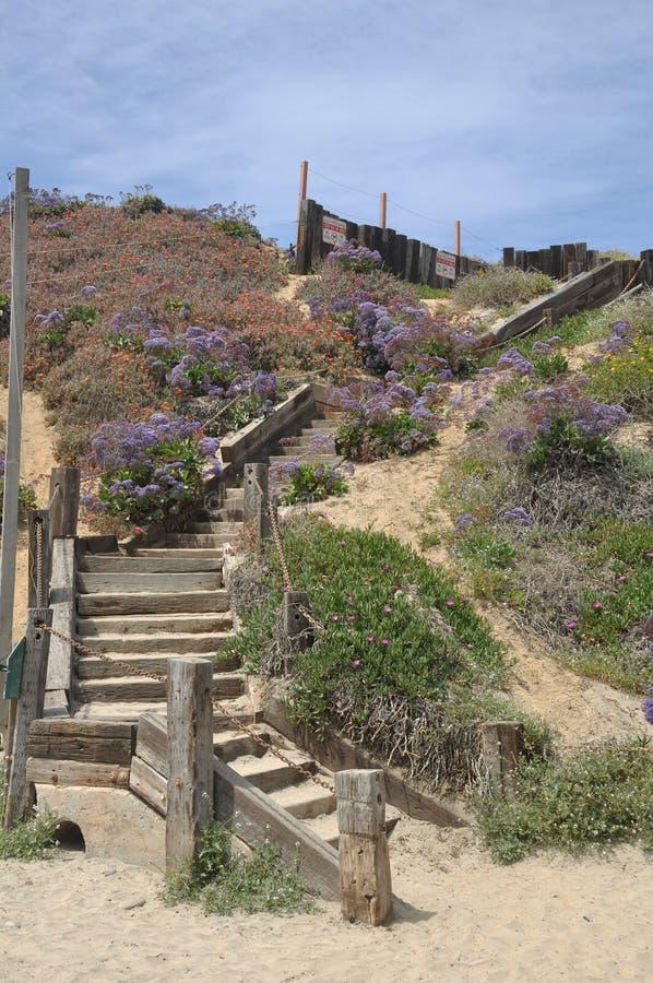 лестница пляжа стоковая фотография