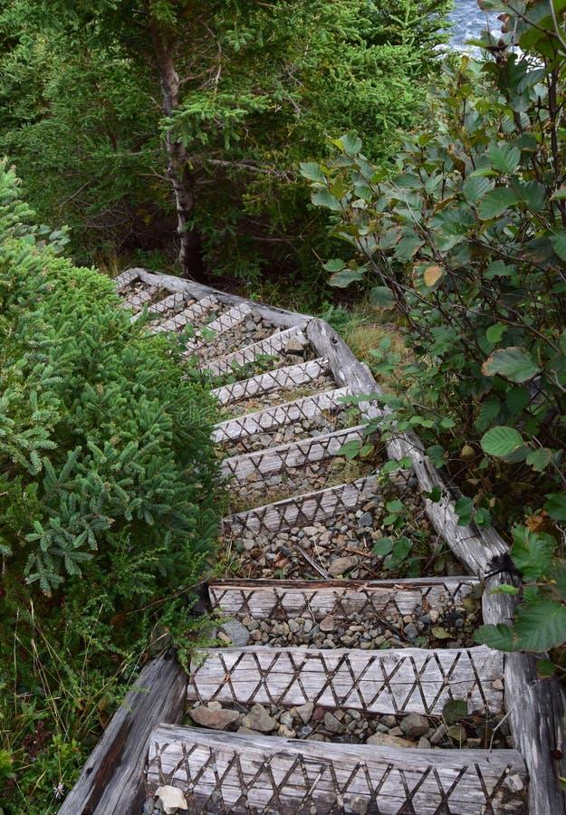 Лестница пути на открытом воздухе вдоль trai восточного побережья стоковое изображение