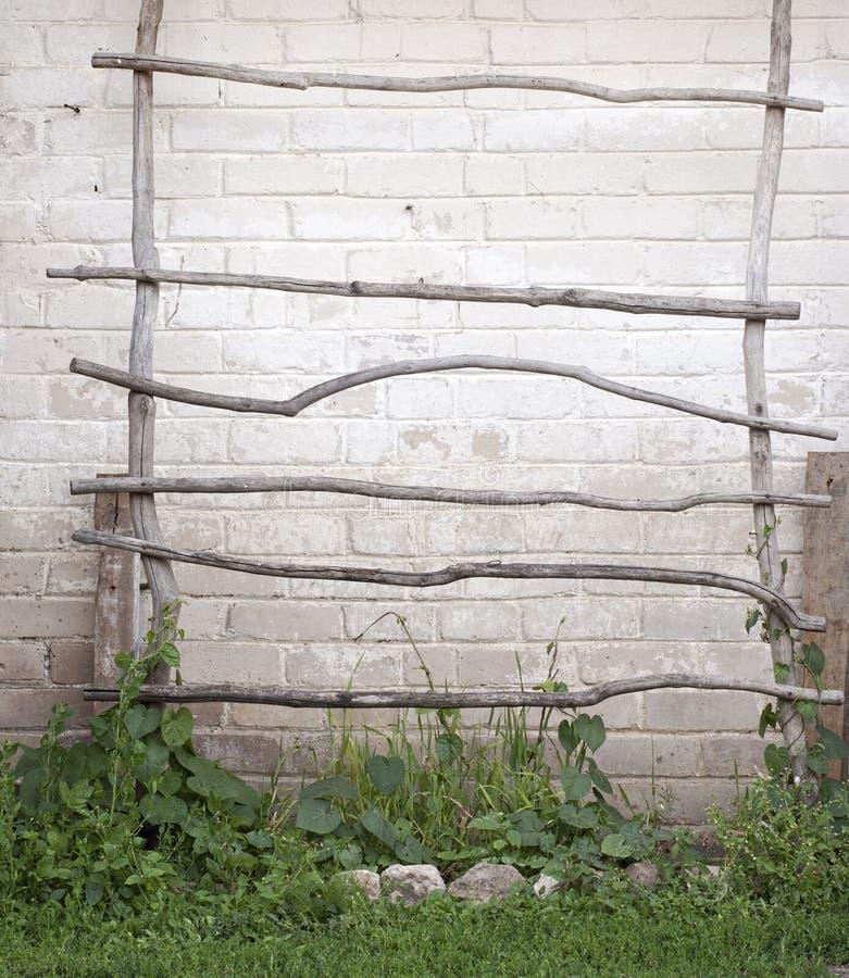 Лестница для заводов creeper, предпосылка стены стоковые фото