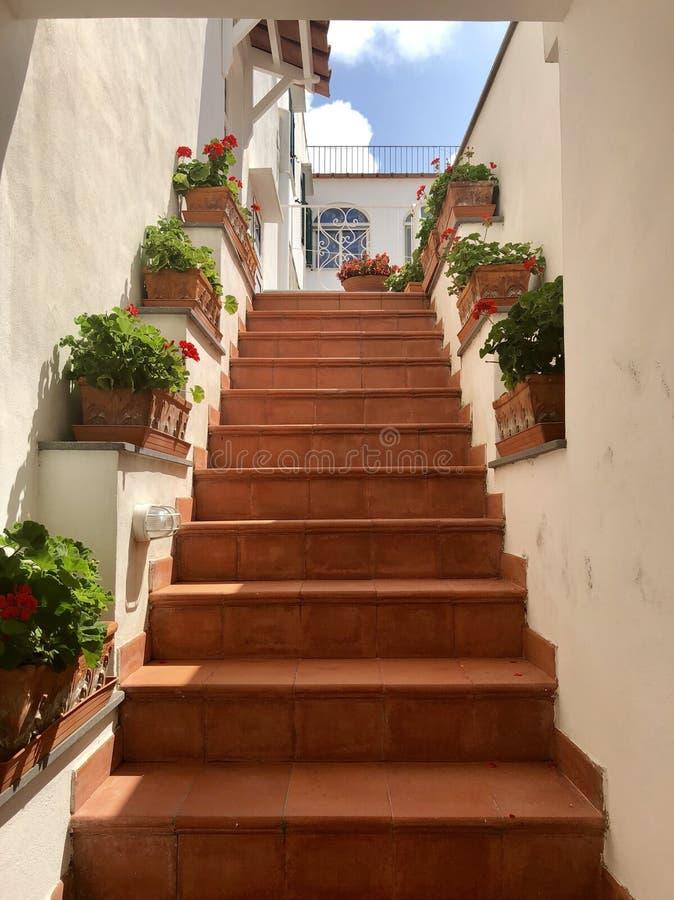 Лестницы к дому сказки стоковые изображения
