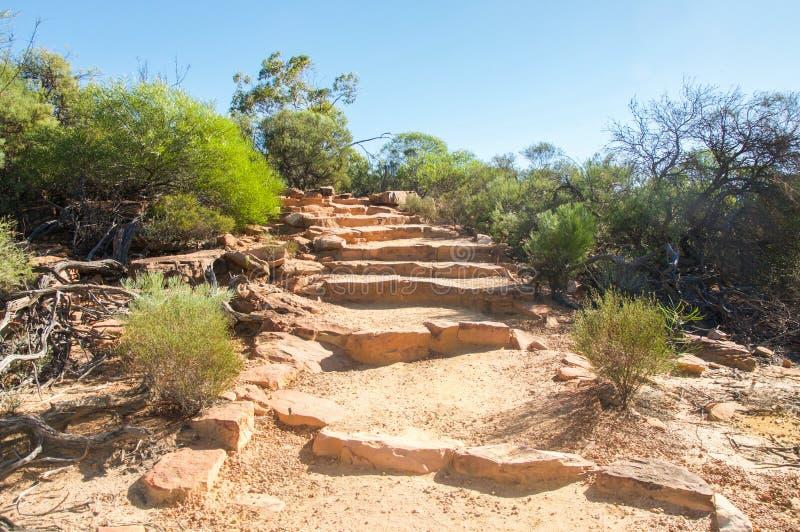 Лестницы песчаника: Z-загиб, национальный парк Kalbarri стоковые изображения