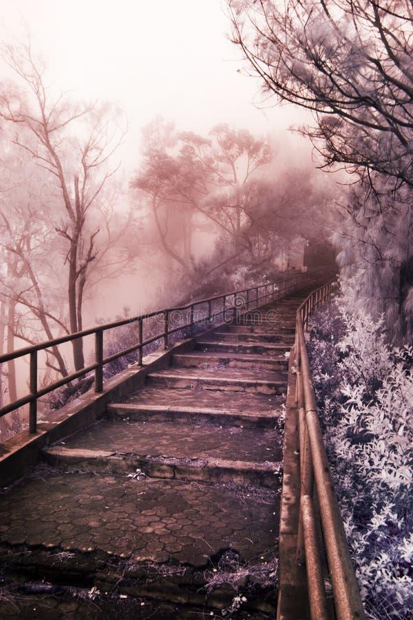 лестницы рая к стоковая фотография rf