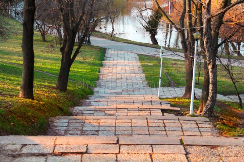 `` Лестницы спортсменов `` в парке города стоковое изображение rf