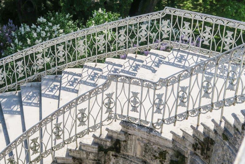 Лестницы с тенями и цветками стоковое фото rf