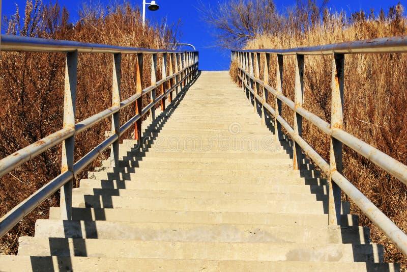 Лестницы цемента водя вверх стоковые изображения