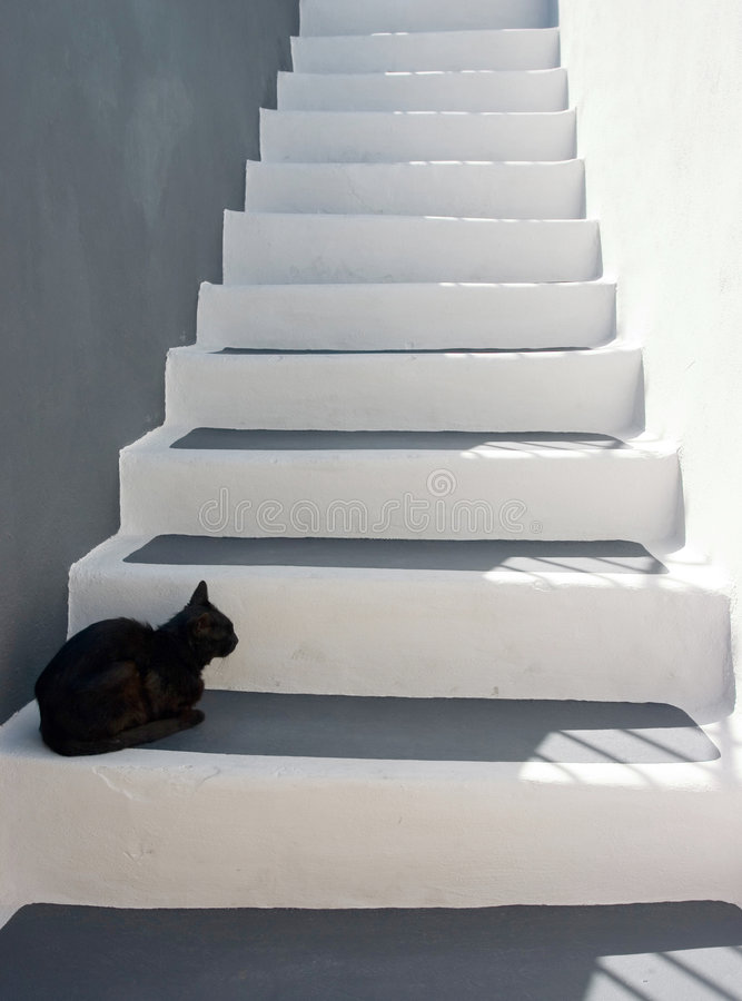 лестницы черного кота стоковая фотография