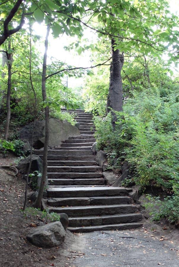 Лестницы Central Park стоковые изображения rf