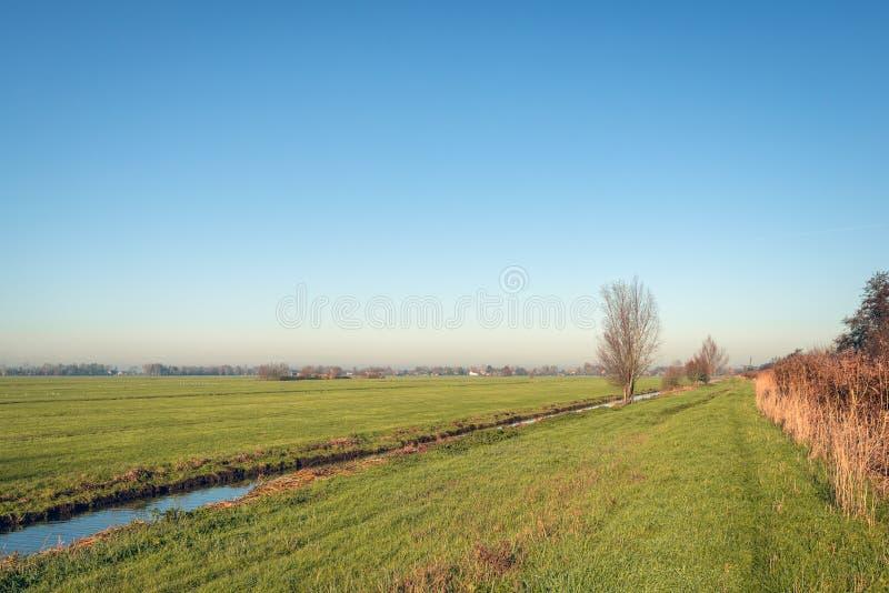 Лестовый пейзаж осенью стоковые изображения