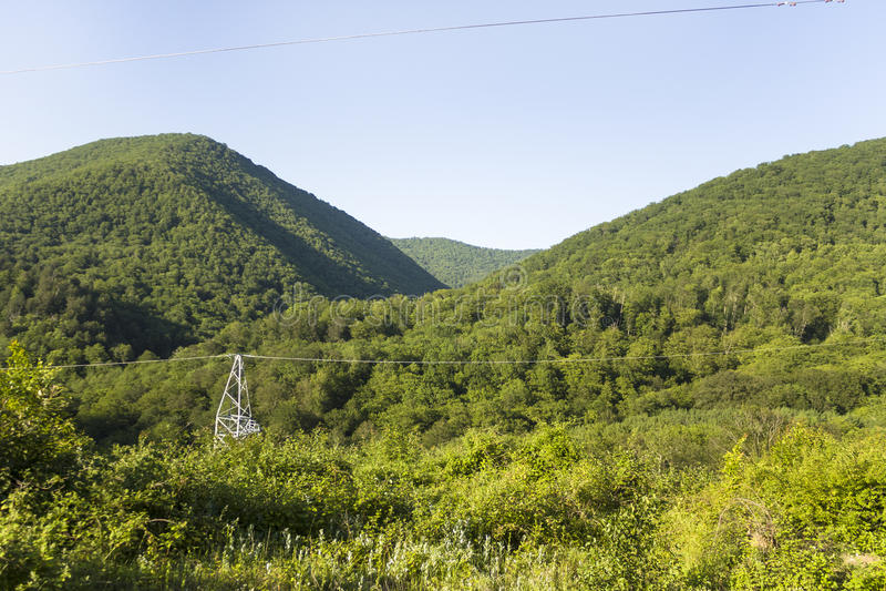 Лес вокруг северного реки горы Кавказа весной стоковое изображение rf