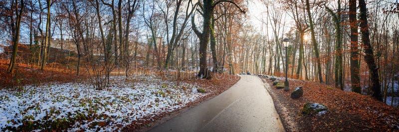 Лес в предыдущей зиме, средневековая крепость на заднем плане стоковая фотография rf