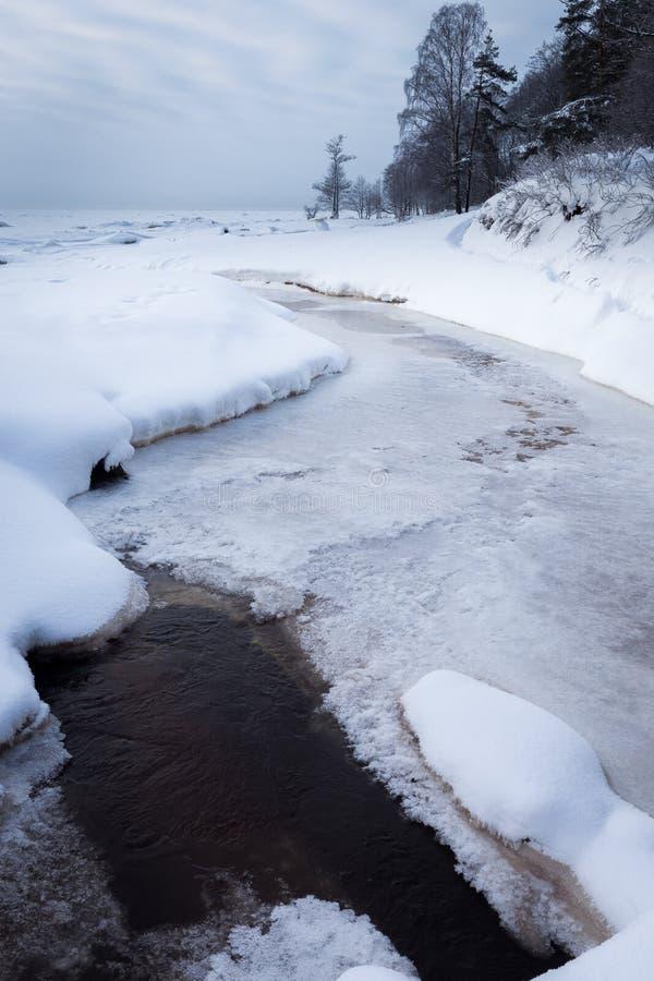 Лес зимы на реке на заходе солнца сезонно Деревья зимы, озеро и голубое небо Морозное снежное река Погода стоковые фото
