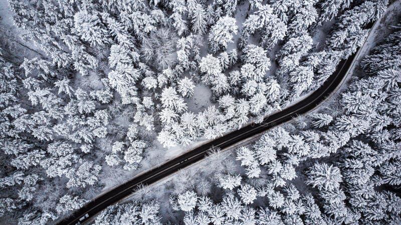 Лес зимы ринва привода автомобиля, вид с воздуха стоковое фото rf